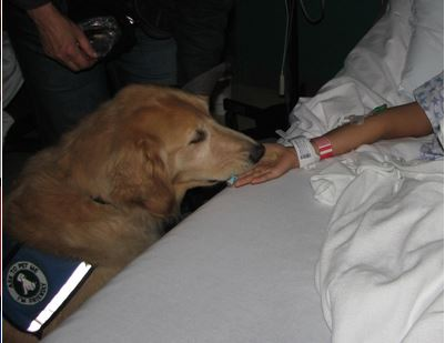 Pet Therapy Visits